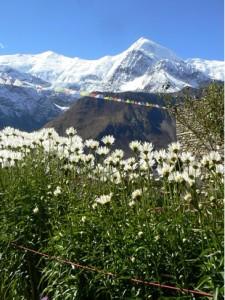 ...oder die beeindruckende Landschaft am Dach der Welt bei Outdoor-Aktivitäten zu entdecken.